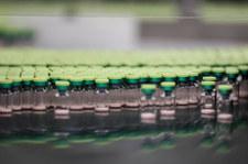 Szczepionki z Polski trafią na Tajwan? Potrzeba milionów dawek