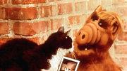 """Szczęściarz - """"Alf"""""""