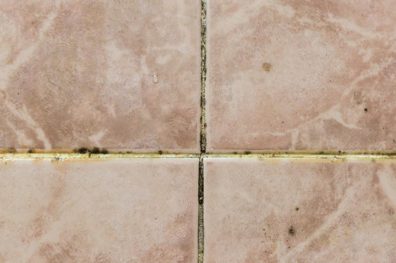 Szczoteczka doskonale nadaje się do czyszczenia trudno dostępnych miejsc w łazience lub kuchni /123RF/PICSEL