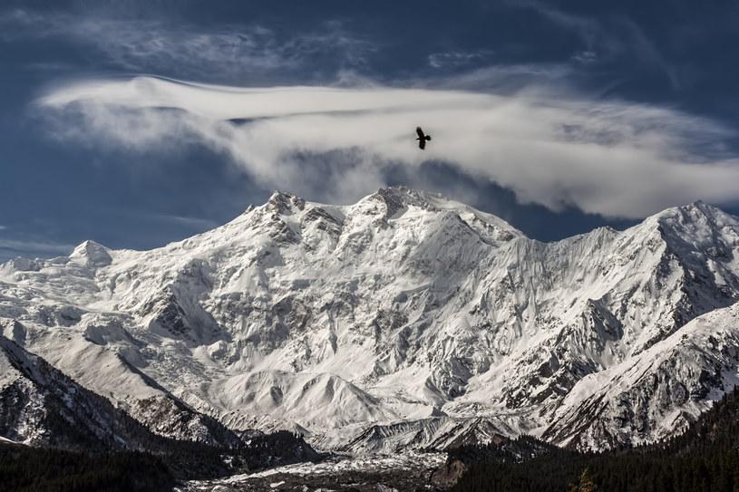 Szczyt Nanga Parbat /domena publiczna