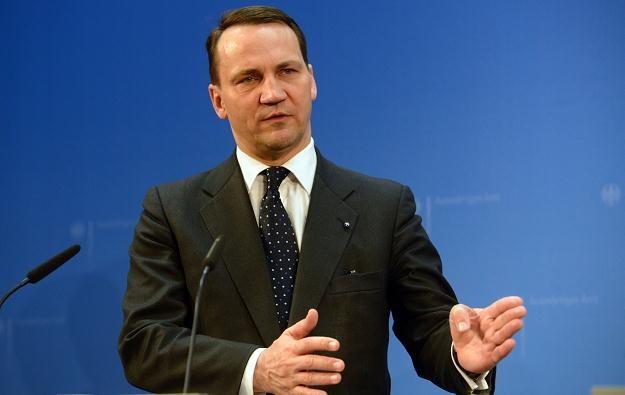 Szef MSZ Radosław Sikorski. /AFP