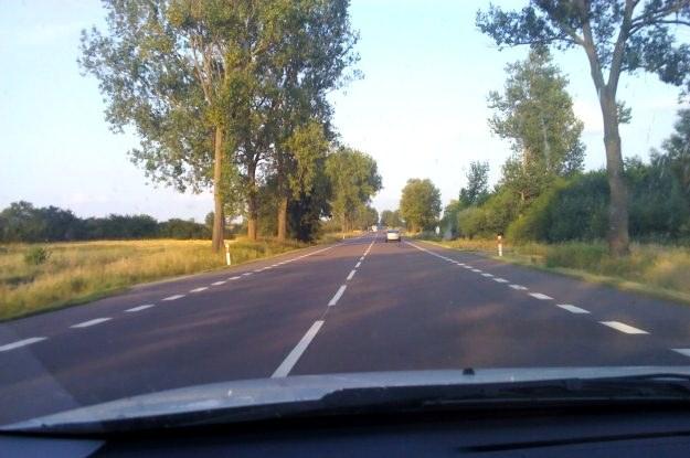 Szeroka i prosta droga w kierunku Chełma /INTERIA.PL
