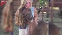 Szeroki uśmiech konia?! Bezcenne