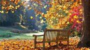 Sześć rzeczy, których nie wolno robić w październiku