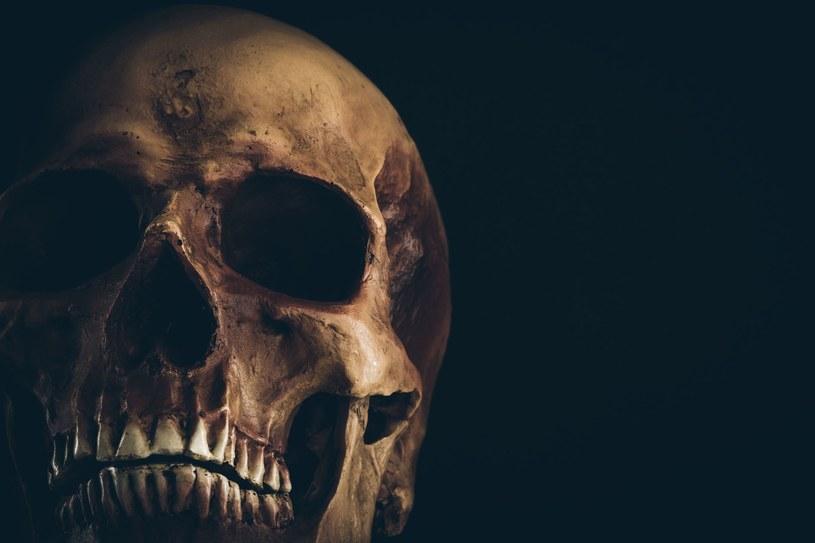 Szkielet z czerwonymi oczami miał straszyć przestępców /123RF/PICSEL