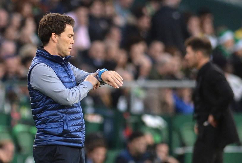 Szkoleniowiec Realu Betis - Rubi /CRISTINA QUICLER /AFP