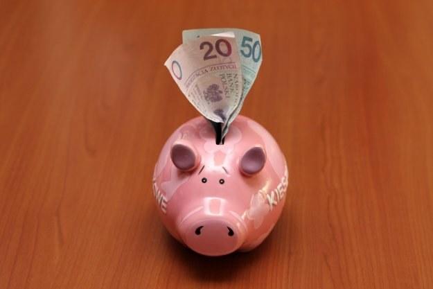 Szkolne kasy oszczędności liczą sobie ponad 80 lat, ale wciąż mają się dobrze /INTERIA.PL
