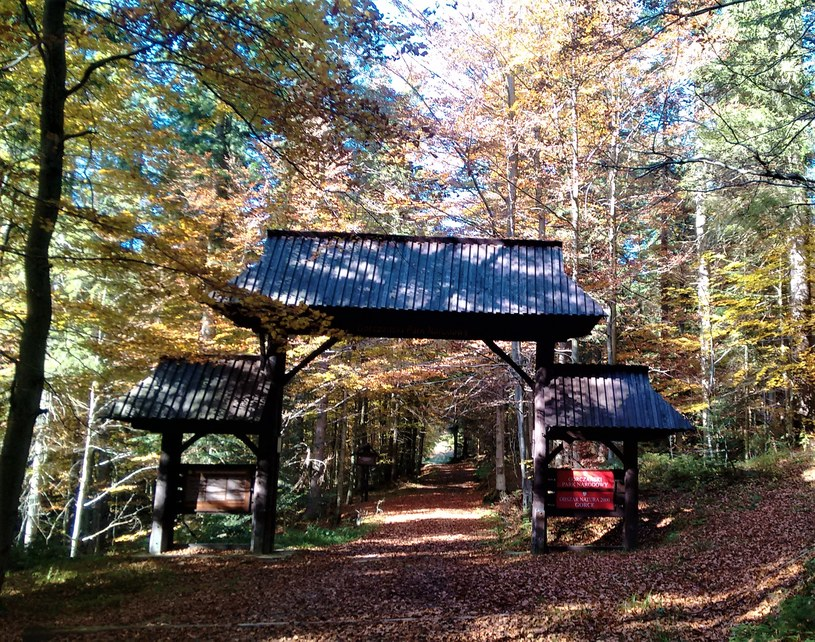 Szlak turystyczny do Liberatora prowadzi na terenie Gorczańskiego Parku Narodowego /Jakub Zygmunt /materiał zewnętrzny