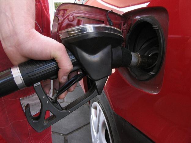 Szlam w baku może pojawić się już w kilkuletnich autach / Fot: Ziemowit Wardecki /Reporter