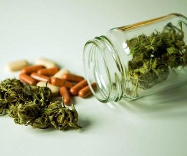 Szokujące korzyści zdrowotne medycznej marihuany