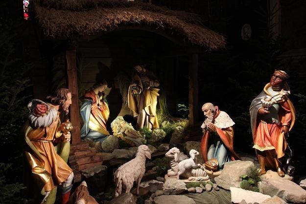 Szopka bożonarodzeniowa przygotowana w kaplicy św. Zofii w katedrze na Wawelu w Krakowie /PAP