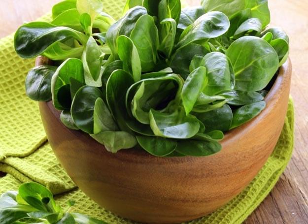 Szpinak możesz wykorzystać do kremowych zup, nadziewania pierogów, farszów do tart oraz sosów do makaronu /Picsel /123RF/PICSEL