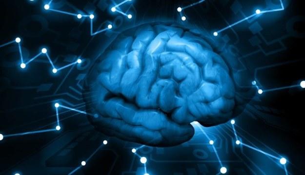 Sztuczna inteligencja jest możliwa? Naukowcy przekonują, że jej stworzenie to tylko kwestia czasu /123RF/PICSEL