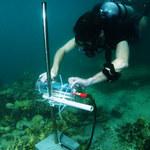 Sztuczna inteligencja ratuje rafy koralowe