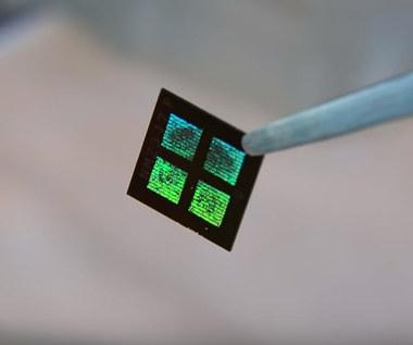 Sztuczna nerka z mikrofiltrami i żywymi komórkami