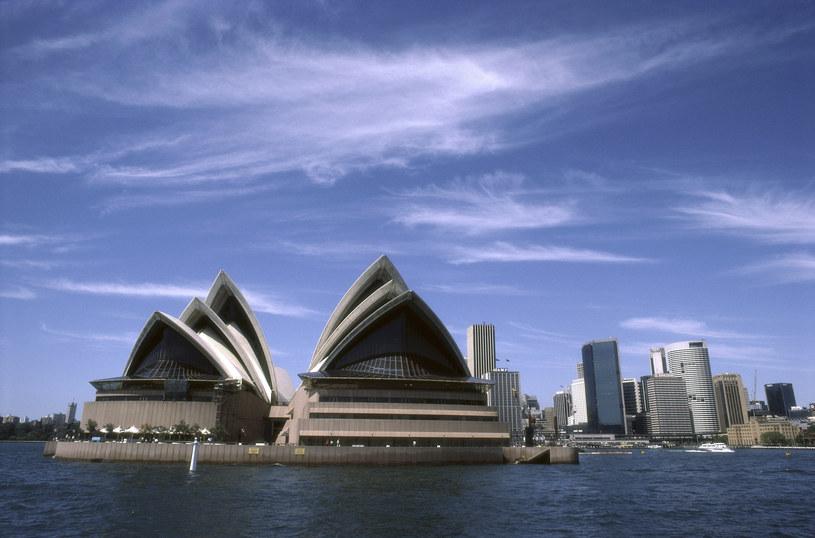 Sztuczne rafy koralowe powstaną w pobliżu opery w Sydney /© Glowimages