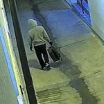 Szturm na Kapitol: Jest nagranie podejrzanego o podłożenie bomb