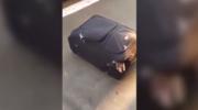 Szwajcaria: Imigrant z Erytrei ukrył się w walizce