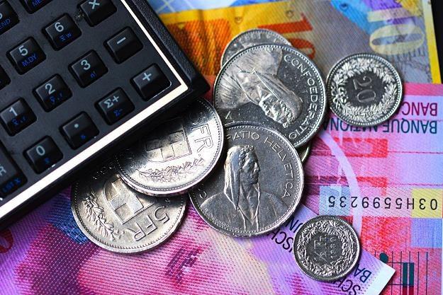 Szwajcaria największym po Stanach Zjednoczonych inwestorem zagranicznym w Polsce spoza UE /©123RF/PICSEL