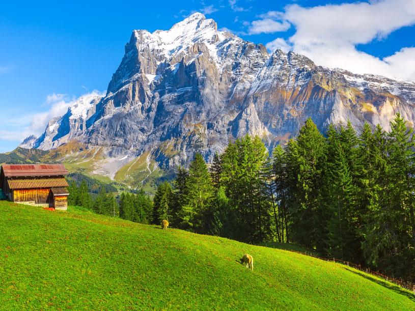 Szwajcaria skusi wielbicieli wędrówek w oszałamiających okolicznościach przyrody /123RF/PICSEL