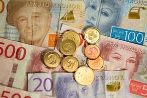 Szwecja: Ile wynosi średnia pensja? 10 tys. zł dla sprzątaczy i zbieraczy jagód