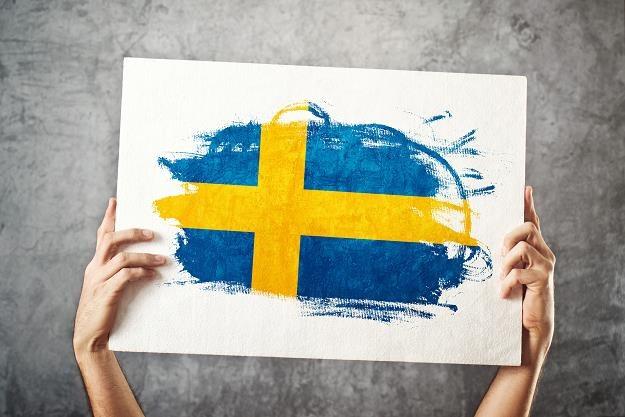 Szwedzi pożegnają się z gotówką w ciągu pięciu lat /©123RF/PICSEL