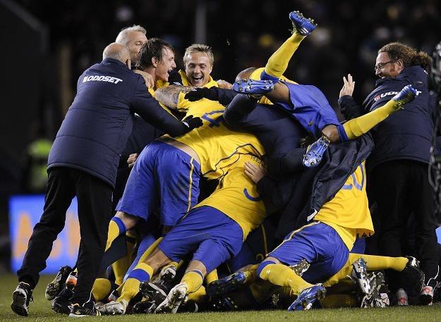 Szwedzi świętują awans do Euro 2012 /AFP
