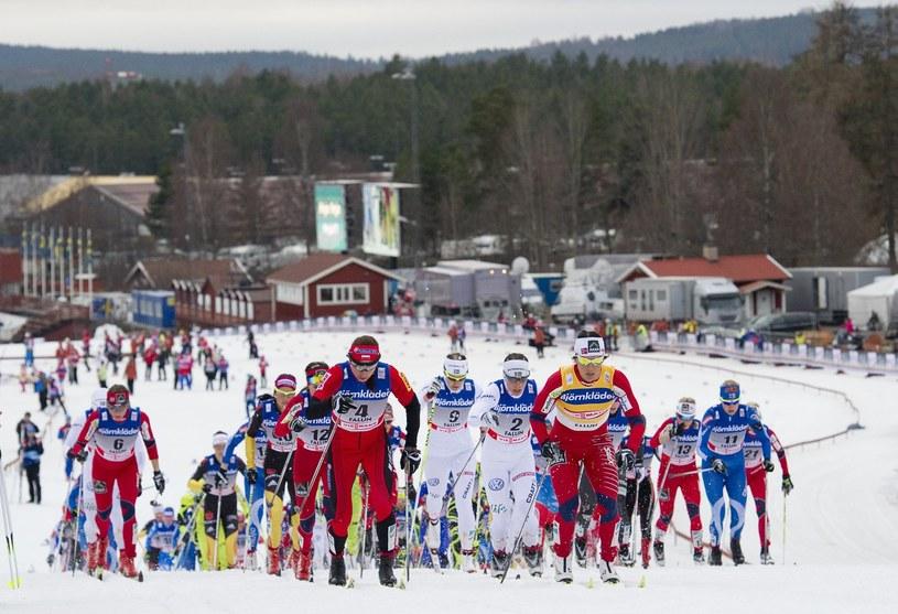 Szwedzi twierdzą, że odkryli tajemnicę norweskich sukcesów w narciarstwie biegowym w ostatnich latach. Jest nią szwedzka maszyna! /. /AFP