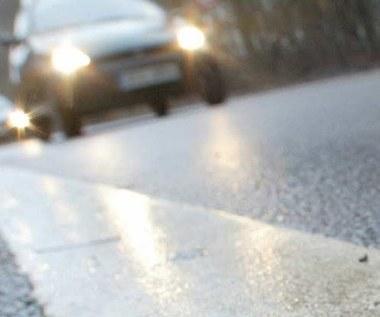 Szwedzi zbudują nam autostradę