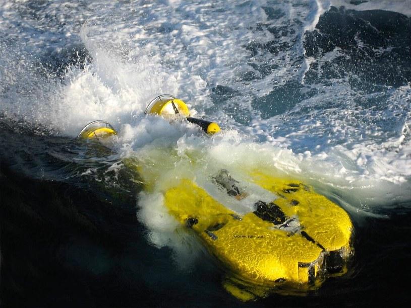 Szwedzki podwodny dron Double Eagle /INTERIA.PL/materiały prasowe