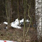 Szybowiec spadł na las. Pilot nie żyje