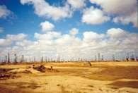 Szyby naftowe w Azerbejdżanie, okolice Baku /Encyklopedia Internautica