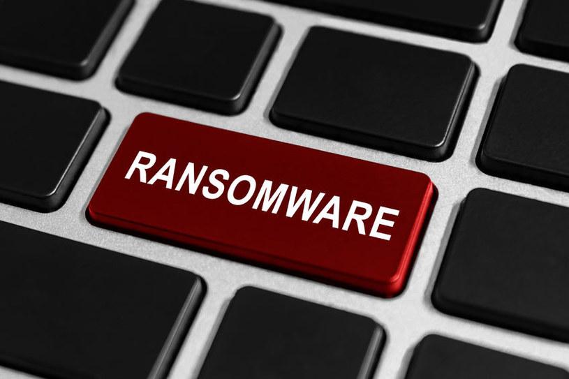 """""""Szyfrujące oprogramowanie ransomware nadal stanowi jedno z najbardziej niebezpiecznych zagrożeń"""" /123RF/PICSEL"""