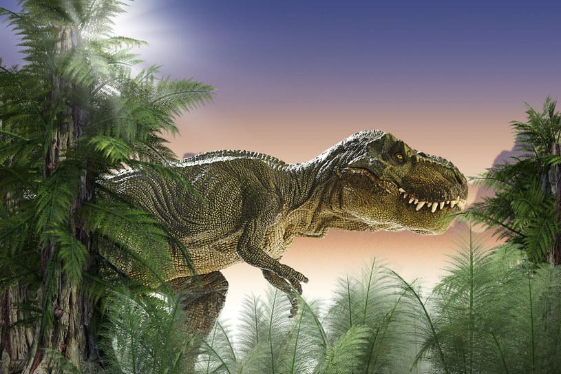 T-Rex /123RF/PICSEL