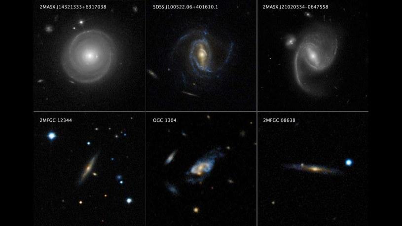 Ta mozaika prezentuje trzy masywne galaktyki spiralne (u góry) i dużo cięższe galaktyki superspiralne (u dołu) /materiały prasowe