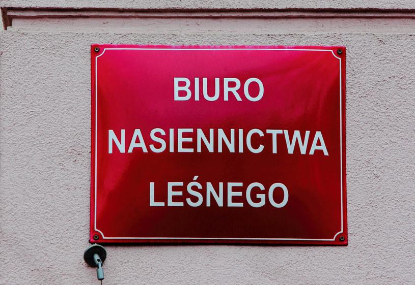 Tablica informacyjna Biura Nasiennictwa Leśnego /Stanisław Kowalczuk / East News /East News
