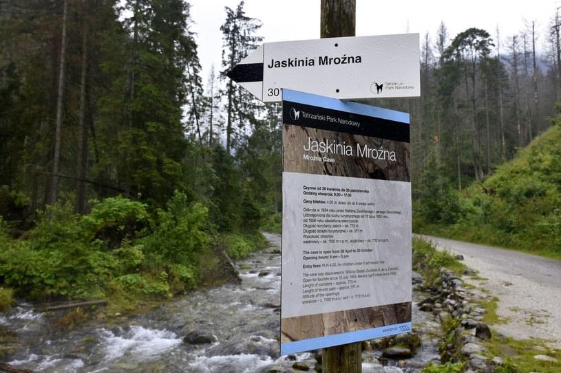 Tablica informacyjna w Dolinie Kościeliskiej kieruąca na szlak do Jaskini Mroźnej /Albin Marciniak /East News