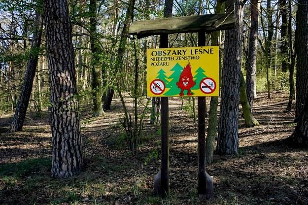 Tablica ostrzegająca o zagrożeniu pożarowym w lesie w Szczecinie, 21 kwietnia 2020 / Marcin Bielecki    /PAP