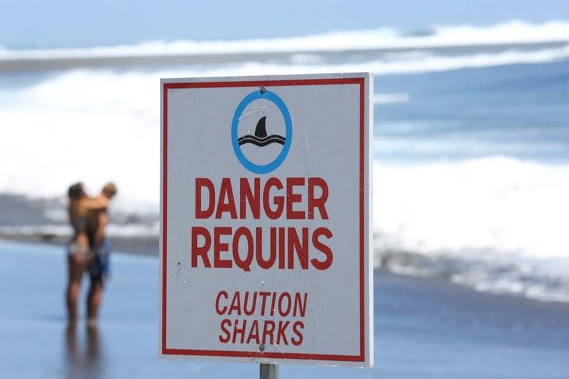Tabliczka ostrzegająca przed rekinami /AFP