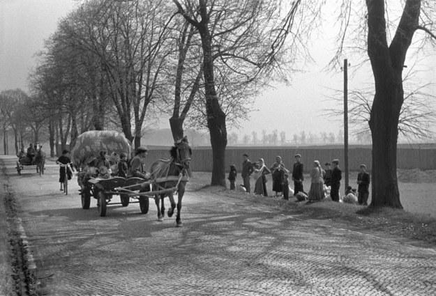 Tabor cygański w okolicach Nysy (maj 1957 r.) /Wojciech Plewiński /Agencja FORUM