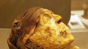 Tajemnicza głowa mumii: Jak FBI pomogło rozwiązać sprawę sprzed 4 tysięcy lat