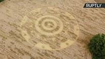 Tajemnicze kręgi w zbożu przyciągają tłumy zwiedzających