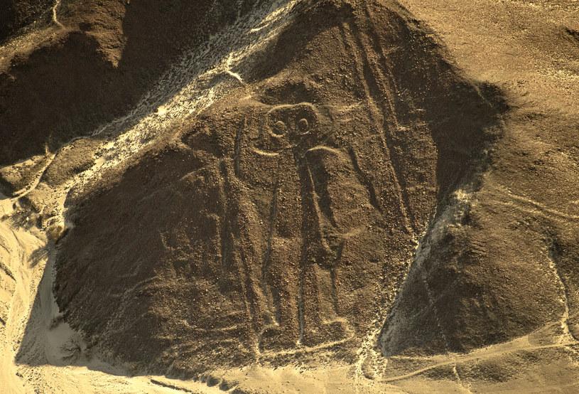 Tajemnicze rysunki w Nazca są badane od lat /AFP