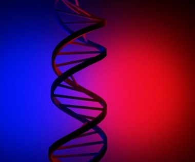 Tajemniczy kod zapisany w naszym DNA