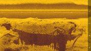 Tajemniczy wrak na dnie Wisły. Co znaleźli archeolodzy?