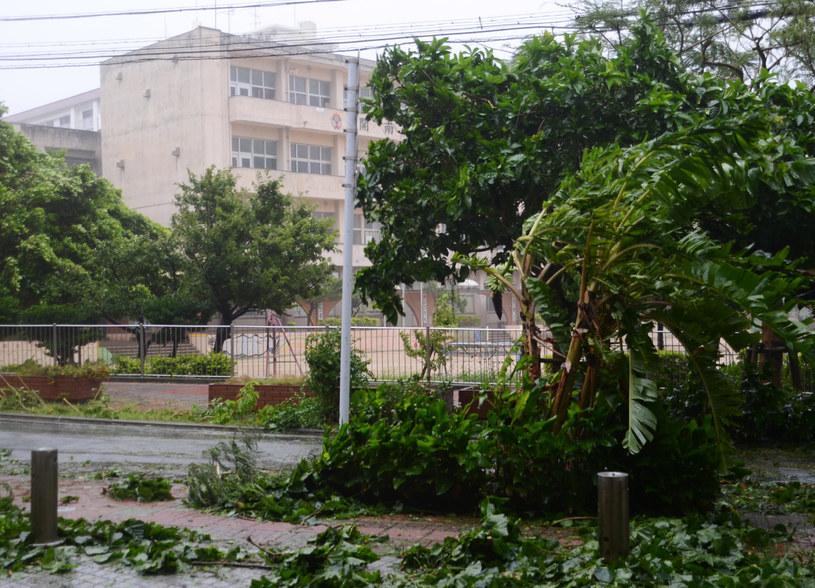 Tajfun już dotarł do Japonii /AFP