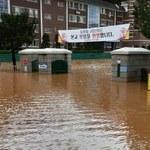 Tajfun w Korei Południowej. 120 tys. domów i cztery reaktory jądrowe bez prądu