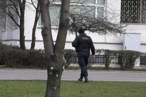Tak działa straż miejska /poboczem.pl
