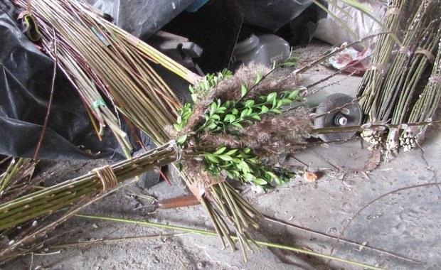 Tak powstają słynne palmy wielkanocne z Lipnicy Murowanej