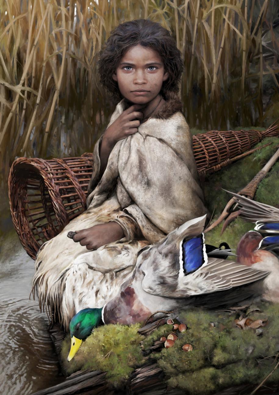 Tak - według naukowców - mogła wyglądać Lola /Rysunek: Tom Björklund/Nature Communications /